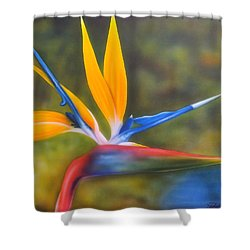 Bird Of Paradise Shower Curtain by Darren Robinson