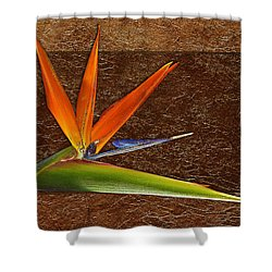 Bird Of Paradise Gold Leaf Shower Curtain by Phyllis Denton