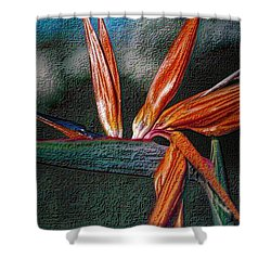 Shower Curtain featuring the photograph Bird-of-paradise by Nadalyn Larsen
