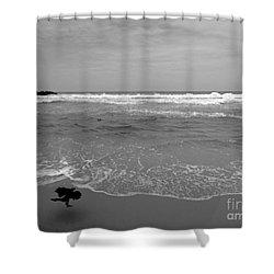 Bird On Kovalam Beach Shower Curtain