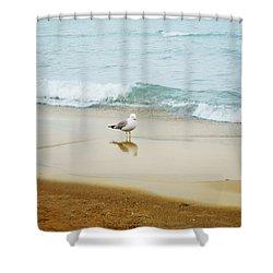 Shower Curtain featuring the photograph Bird On The Beach by Milena Ilieva