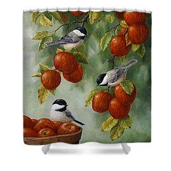 Bird Painting - Apple Harvest Chickadees Shower Curtain