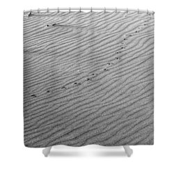 Bird Prints On Beach Shower Curtain