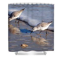 Birds Shower Curtain