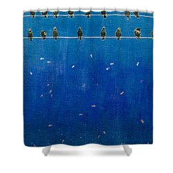Birds And Fish Shower Curtain