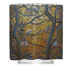 Birds And Light Shower Curtain