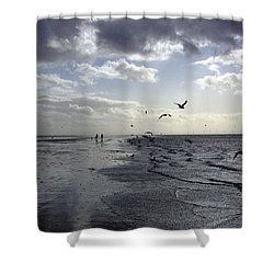 Birds At The Beach 2 Shower Curtain