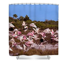 Birds Call To Flight Shower Curtain
