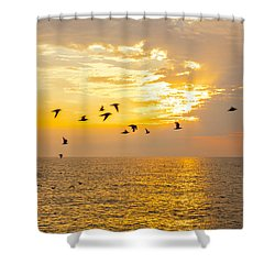 Shower Curtain featuring the photograph Birds In Lake Erie Sunset by David Coblitz