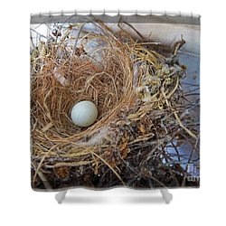 Shower Curtain featuring the photograph Birds Nest - Perfect Home by Ella Kaye Dickey