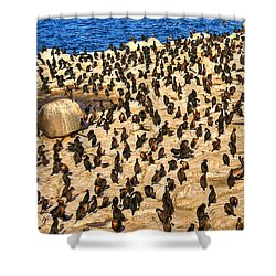 Shower Curtain featuring the photograph Birds Of A Feather Stick Together by Jim Carrell