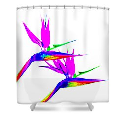 Birds Of Paradise Shower Curtain by Art Block Collections