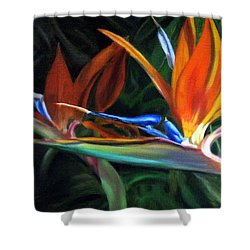 Birds Of Paradise Shower Curtain by LaVonne Hand