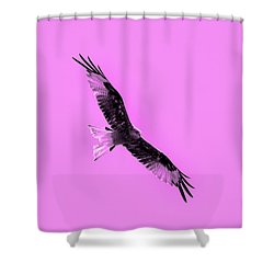 Birds Of Prey Shower Curtain by Tommytechno Sweden