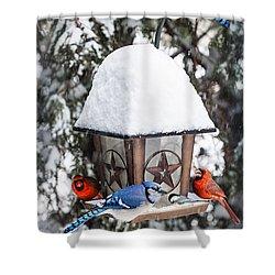 Birds On Bird Feeder In Winter Shower Curtain