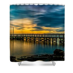 Birds On The Dock Shower Curtain