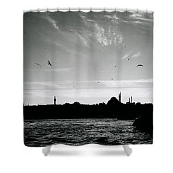 Birds Over The Golden Horn Shower Curtain