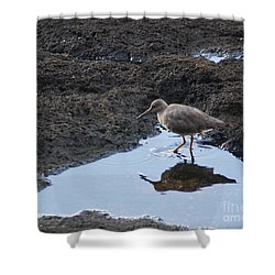 Bird's Reflection Shower Curtain by Belinda Greb
