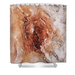 Birth Of The Earth 01 Shower Curtain