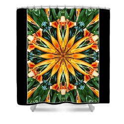 Birthday Lily For Erin Shower Curtain by Nick Heap
