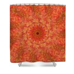 Birthing Mandala 17 Shower Curtain
