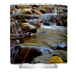 Bisbee Creek Shower Curtain