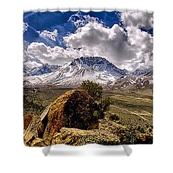 Bishop California Shower Curtain