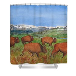 Bison At Yellowstone Shower Curtain by Patricia Beebe