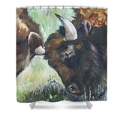 Shower Curtain featuring the painting Bison Brawl by Lori Brackett
