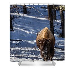 Bison In Winter Shower Curtain