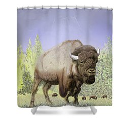Bison On The Range Shower Curtain