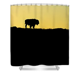 Shower Curtain featuring the photograph Bison Sunrise by Sonya Lang