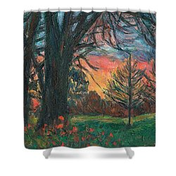 Bisset Park Sunrise Shower Curtain by Kendall Kessler