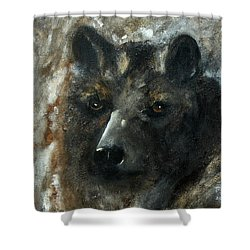 Shower Curtain featuring the painting Bjomolf - Bear Wolf by Barbie Batson