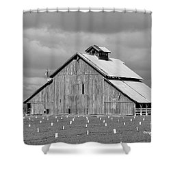 Shower Curtain featuring the photograph Black And White Barn by Debby Pueschel