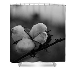 Black And White Boll Shower Curtain
