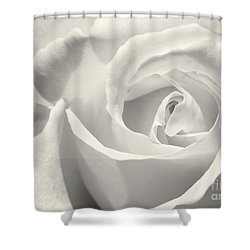 Black And White Curves Shower Curtain by Sabrina L Ryan