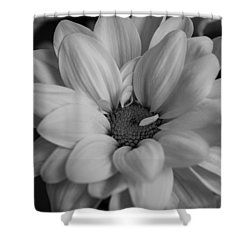 Black And White Dahlia Shower Curtain