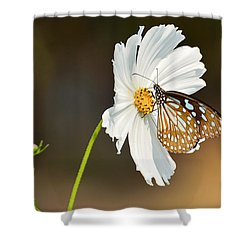 Black And White Shower Curtain by Fotosas Photography