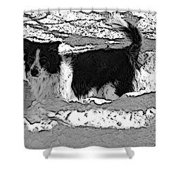 Black And White In Snow Shower Curtain by Michael Porchik