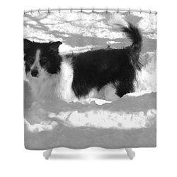 Black And White In The Snow Shower Curtain by Michael Porchik