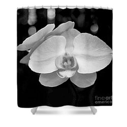 Black And White Orchid With Lights - Square Shower Curtain