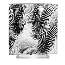Black And White Palm Fronds Shower Curtain by Karon Melillo DeVega