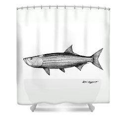 Shower Curtain featuring the drawing Black And White Tarpon by Steve Ozment