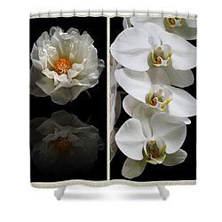 Black And White Triptych Shower Curtain