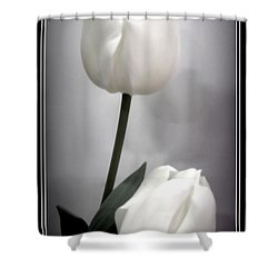 Black And White Tulips  Shower Curtain by Danielle  Parent