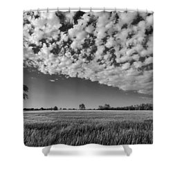 Black And White Wheat Field Shower Curtain