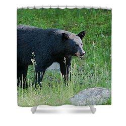Black Bear Female Shower Curtain