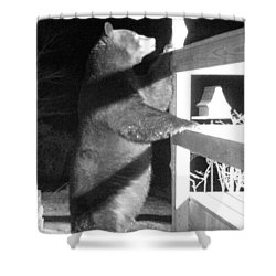 Shower Curtain featuring the photograph Black Bear by Mim White