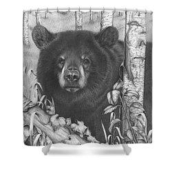 Black Bear On Newsome Creek Shower Curtain